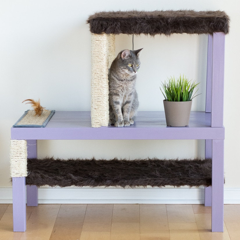 Make a Homemade Cat Condo