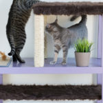 DIY Cat Tree Using Ikea Tables