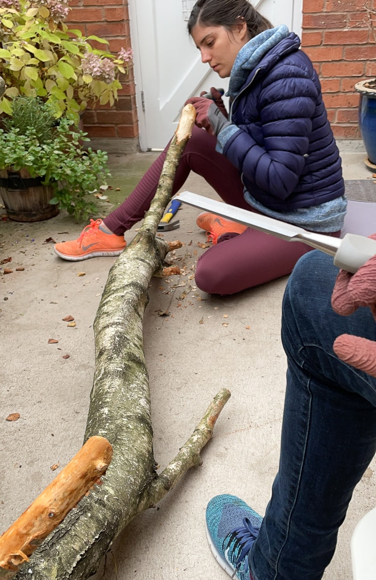 woman removing bark from a tree branch