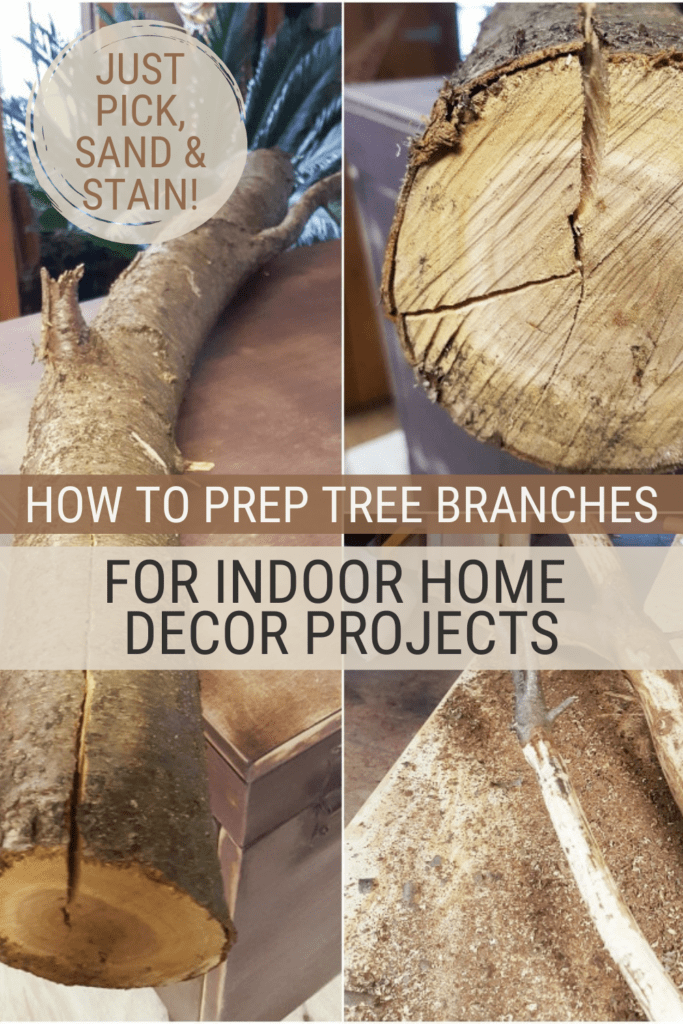 How to Treat Tree Branches for Indoor Use