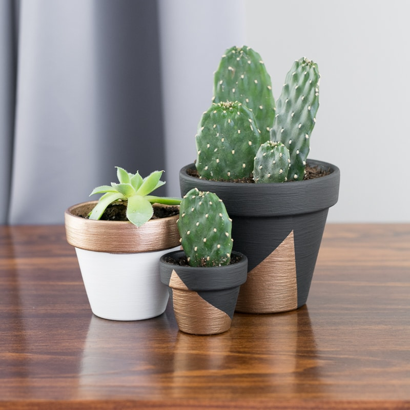 Make Modern Mini Painted Plant Pots // An easy DIY project to make cheap little painted pots complement your decor.