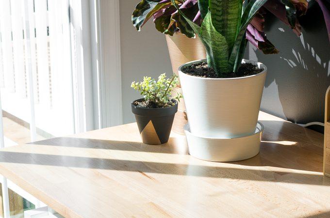 Refinishing a Beech Desk Top: Polycrylic vs. Polyurethane