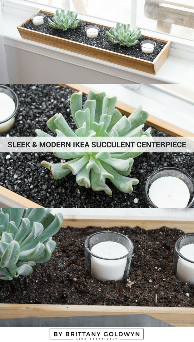 Make a chic and modern Ikea succulent centerpiece. All of the supplies are from Ikea and are under $20 total!