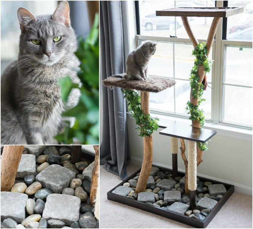 Make a cat tree using real branches. See how I made this beauty for about $75!