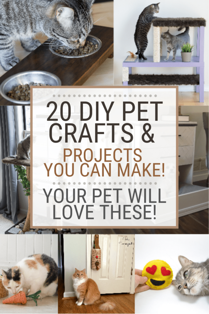 Collage of 7 images of projects for pets with text overlay 20 DIY Pet Crafts & Projects You Can Make. Your Pet Will Love These!