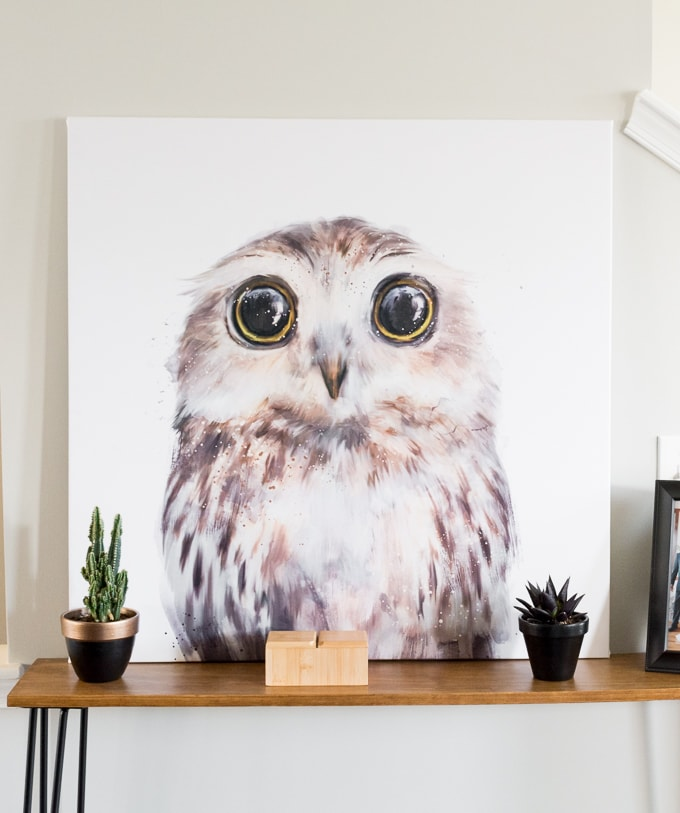 Make over an old canvas // Large DIY Owl Art