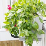 Build a Deck Railing Planter