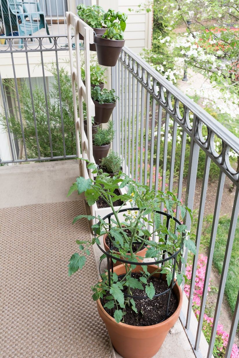 small garden on an apartment balcony