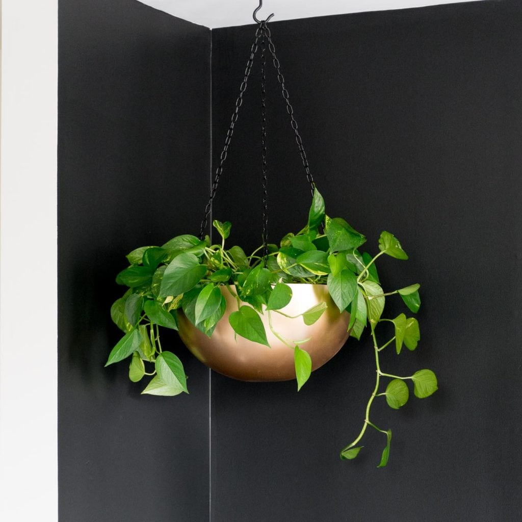 make a hanging planter out of a stainless steel bowl and a little paint