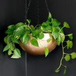 Make a Hanging Planter: DIY Stainless Steel Bowl Hanging Planter