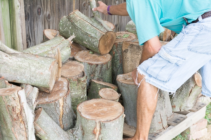 learn how to make tree stump side table by staining and finishing a stump itu002639s awesome tree trunk table 1
