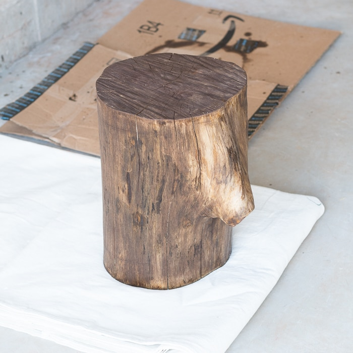 staining a tree stump