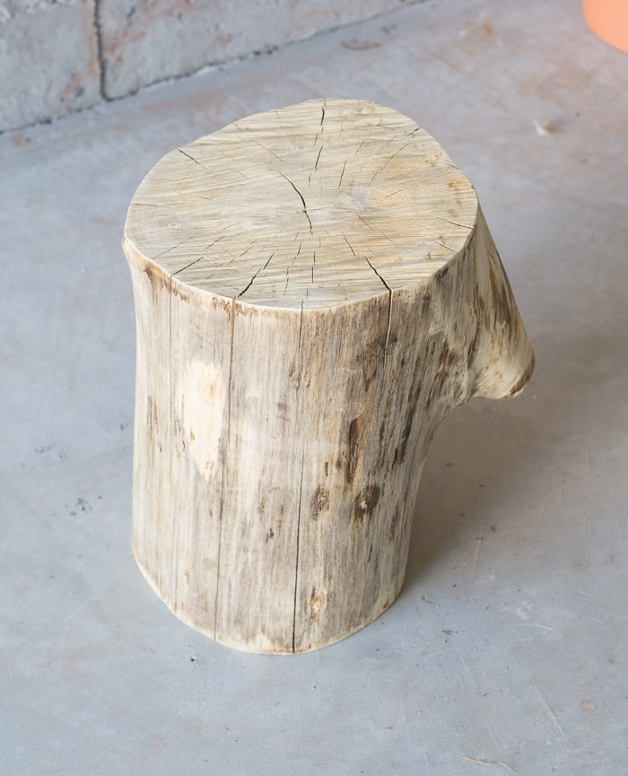 sanded tree stump