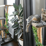 Our DIY Tree Branch Cat Tree: An Update