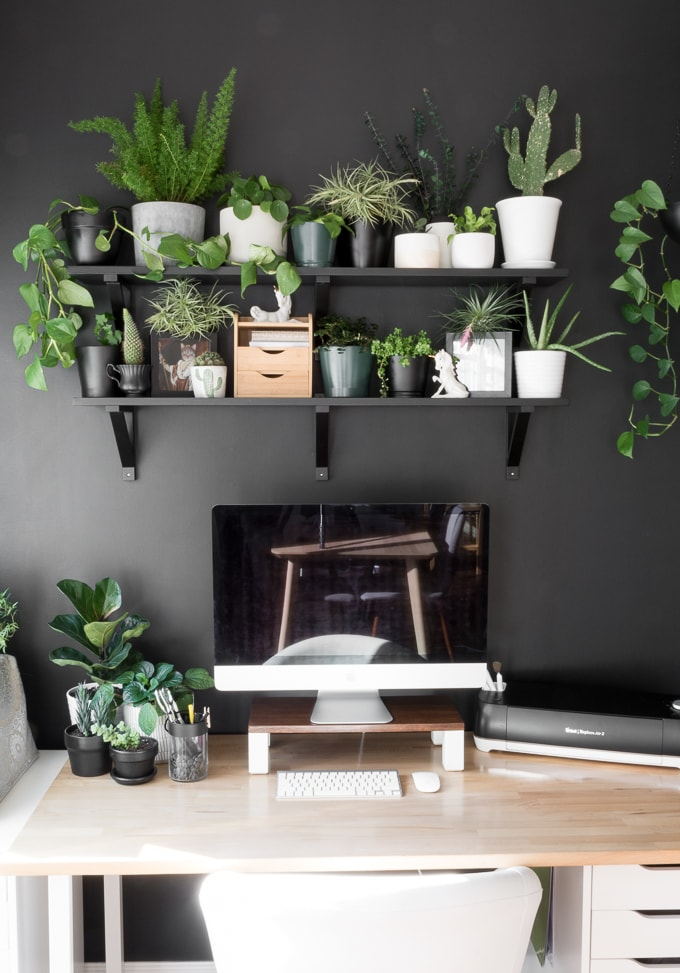 beautiful workspace with ikea gerton desk top and plant shelving
