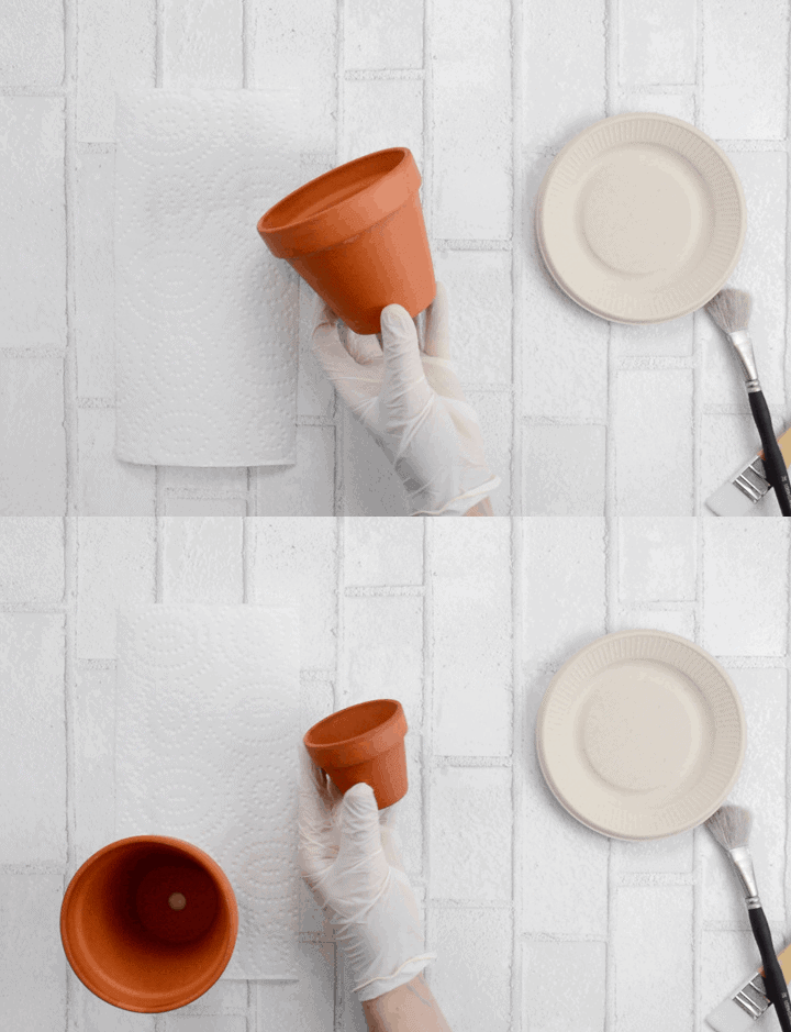 waterproofing clay pots and a gloved hand holding small terracotta pots
