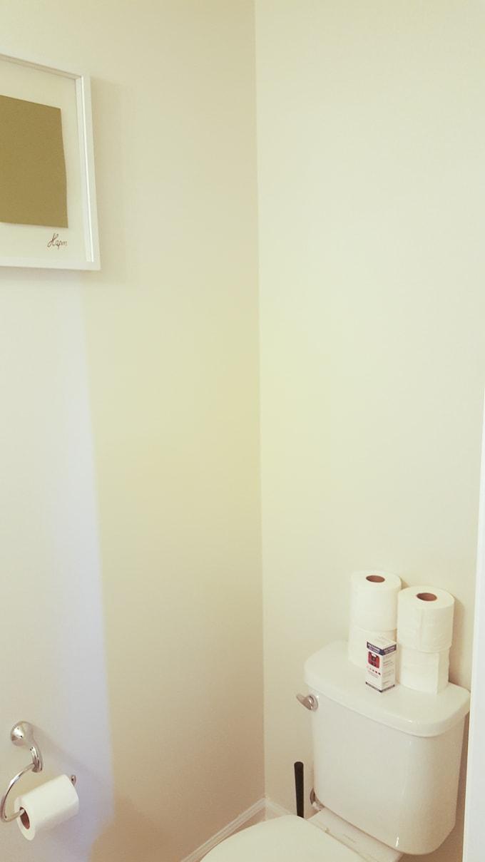 Modern powder room makeover before pics