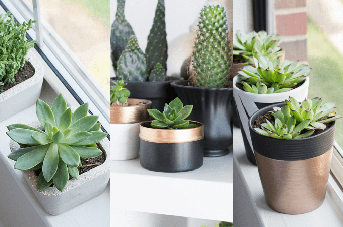 15 DIY Indoor Planters to Help You Decorate With Plants