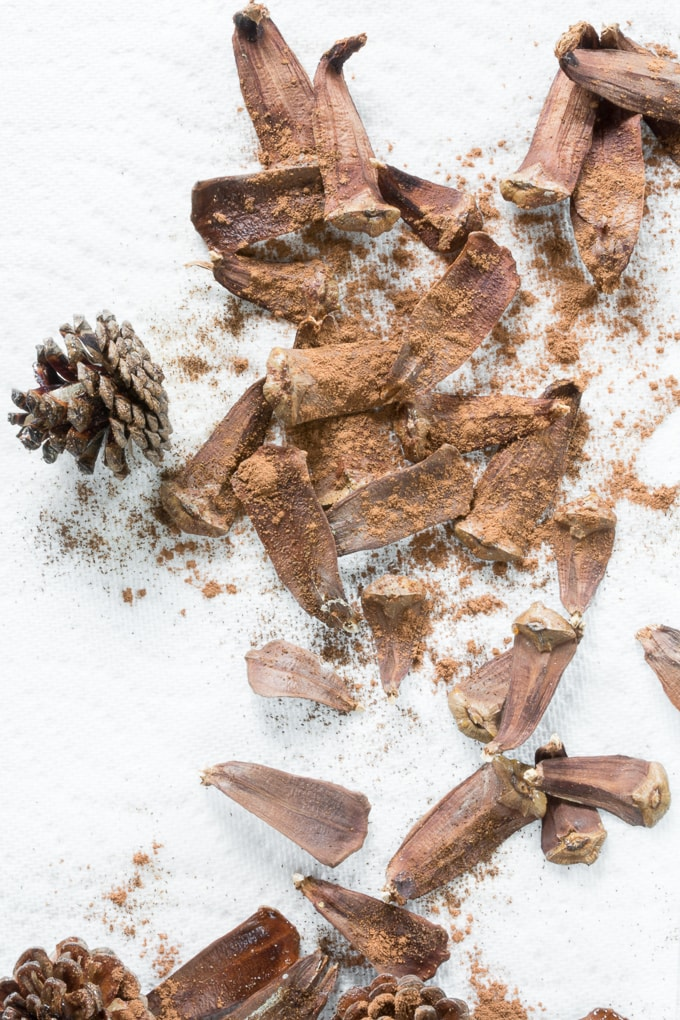 DIY Scented Pine Cone Potpourri #diy #holidaycrafts #pinecones #potpourri #pineconepotpourri #scentedpinecones
