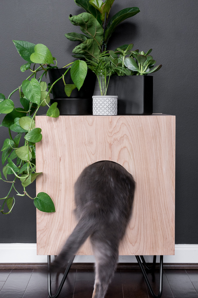 DIY cat house side table
