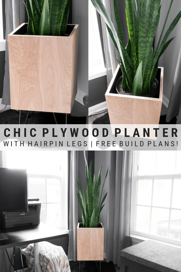 DIY Modern Planter: Plywood Planter With Hairpin Legs