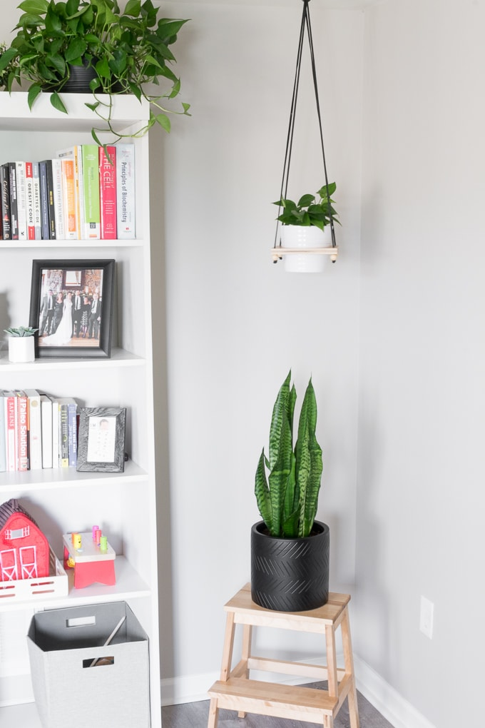 DIY hanging plant holder
