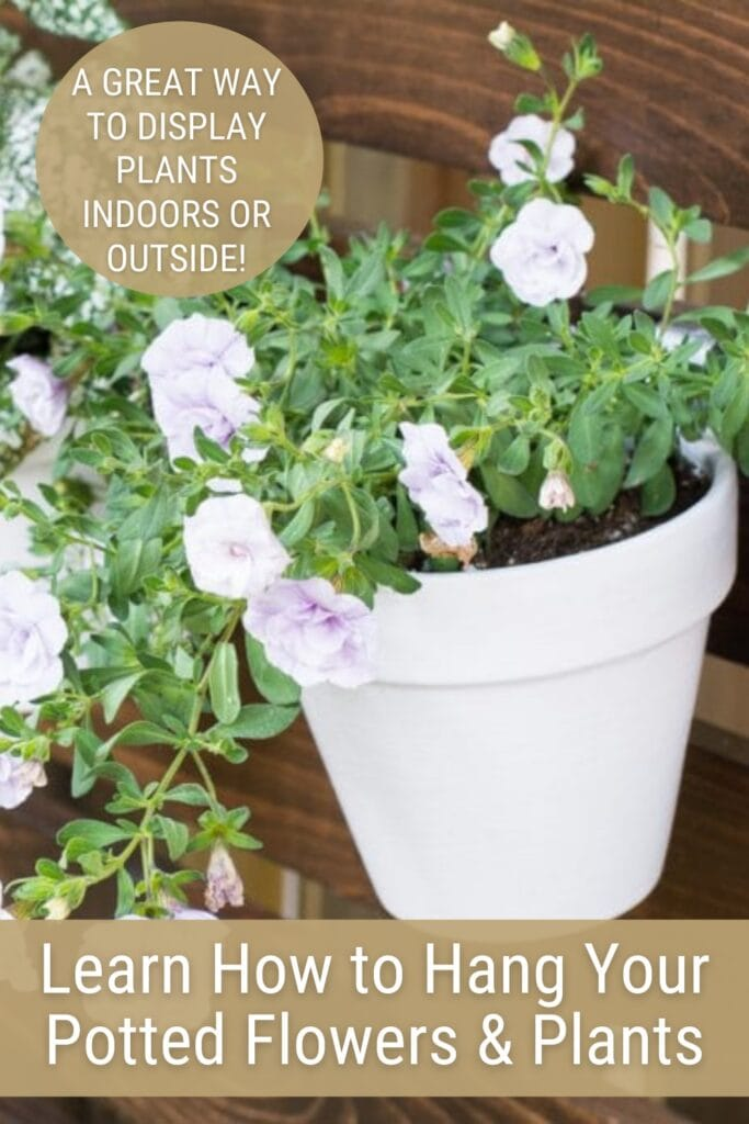 white flower pot hanging on fence with text Learn How to Hang Your Potted Flowers $ Plants