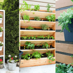DIY Gardens for Small Spaces: Vertical & Container Gardening Ideas