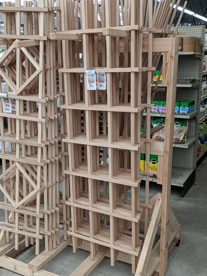trellis at a store