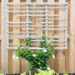 DIY Trellis for Vines (DIY at Home June)