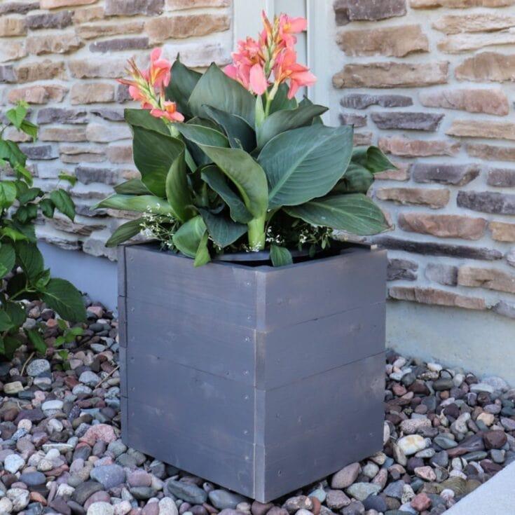 2 Hour DIY Wood Planter Box