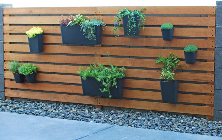 Easy & Amazing Modern DIY Living Plant Wall
