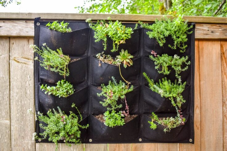 Easiest Vertical Garden Ever!
