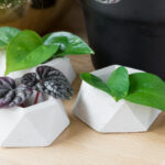 DIY Geometric Concrete Planter Pot (At Home DIY September)