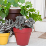 How to Paint Flower Pots for Outdoors