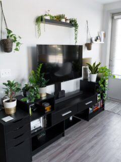 beautiful modern living room with tv and plants