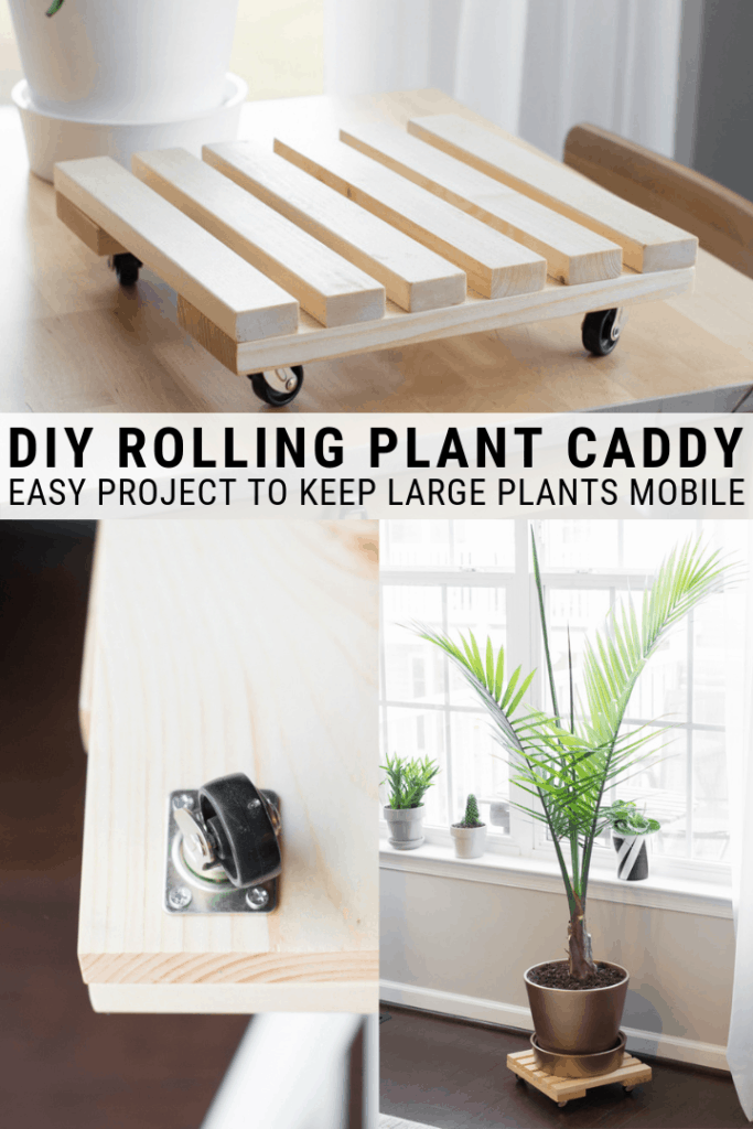 DIY rolling plant caddy