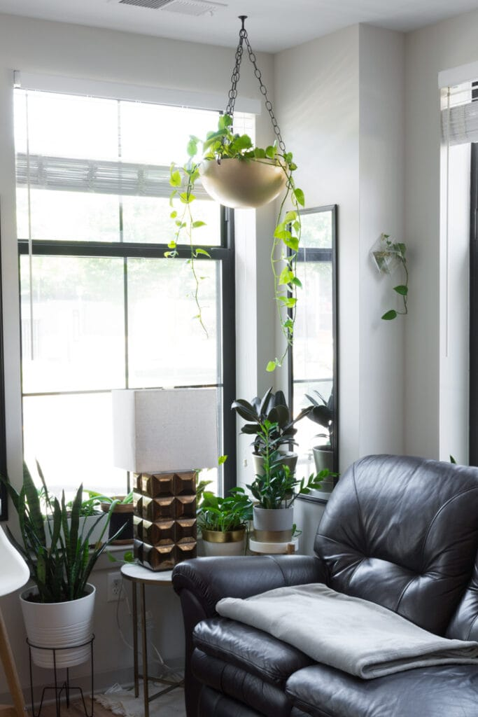 How to Hang a Planter From the Ceiling