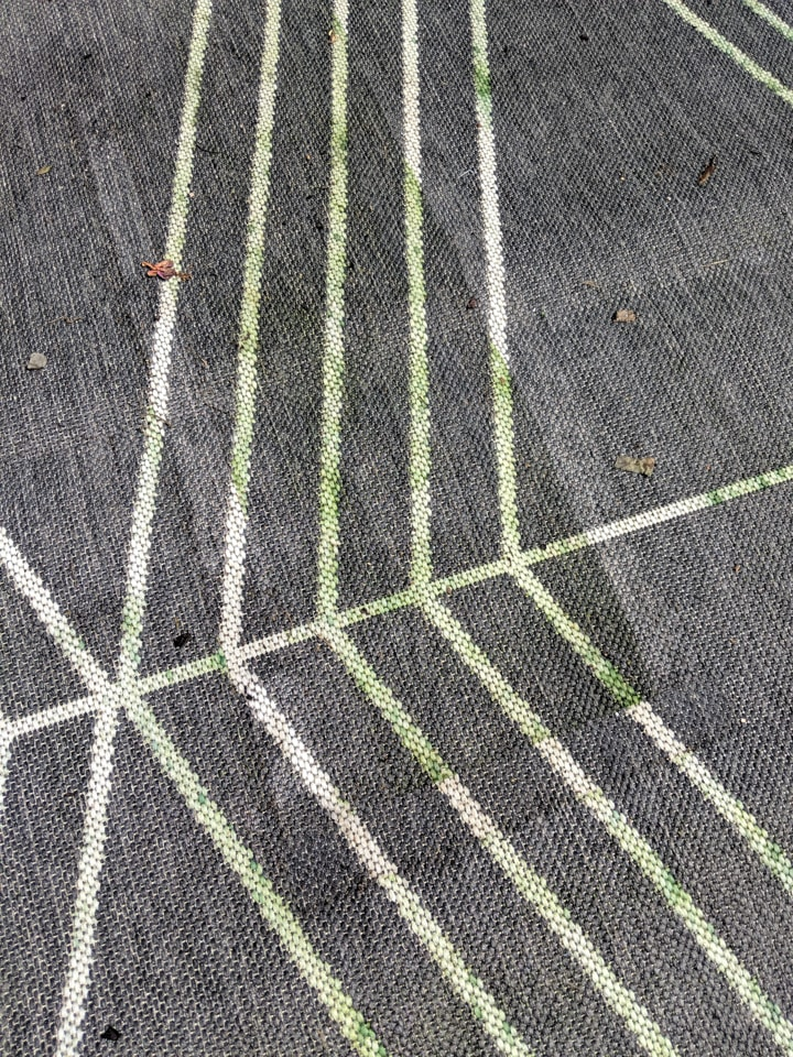 cleaning grass stains on a patio rug