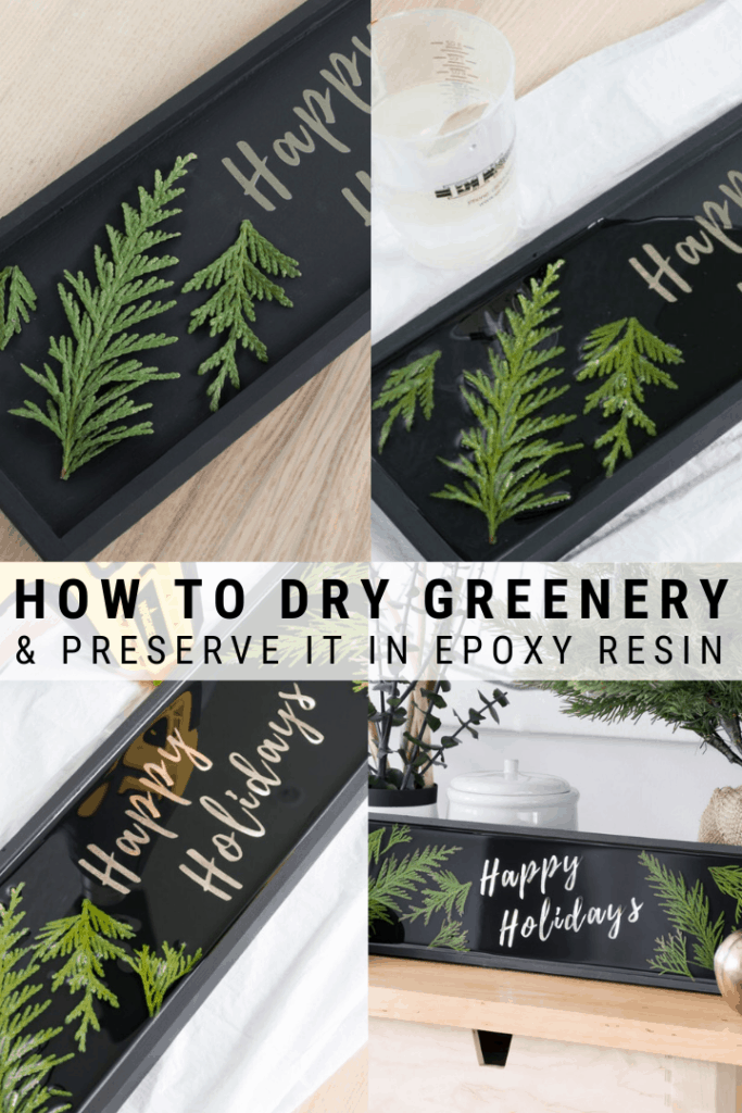 Preserving Leaves in Resin: How to Preserve Evergreen Leaves
