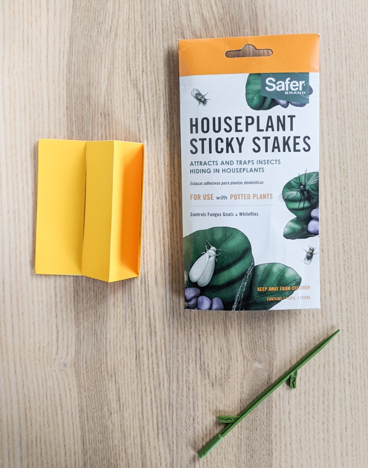 sticky stakes for houseplant pest control