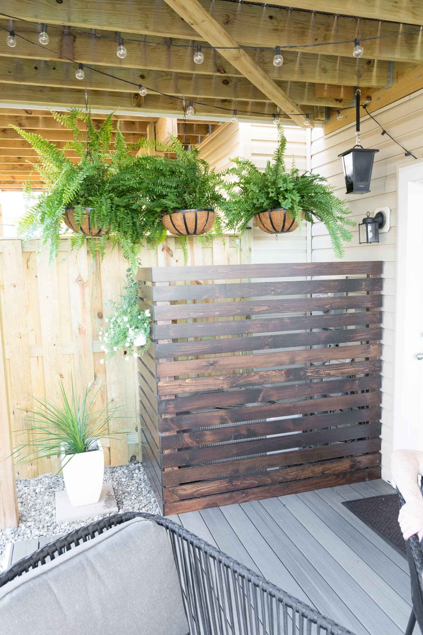 hanging ferns on a small townhouse patio