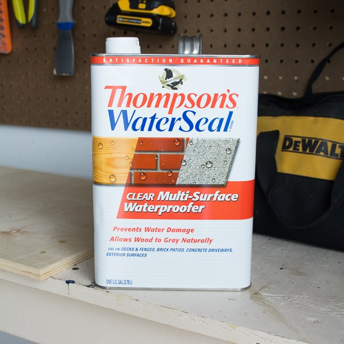 thompson's waterseal can