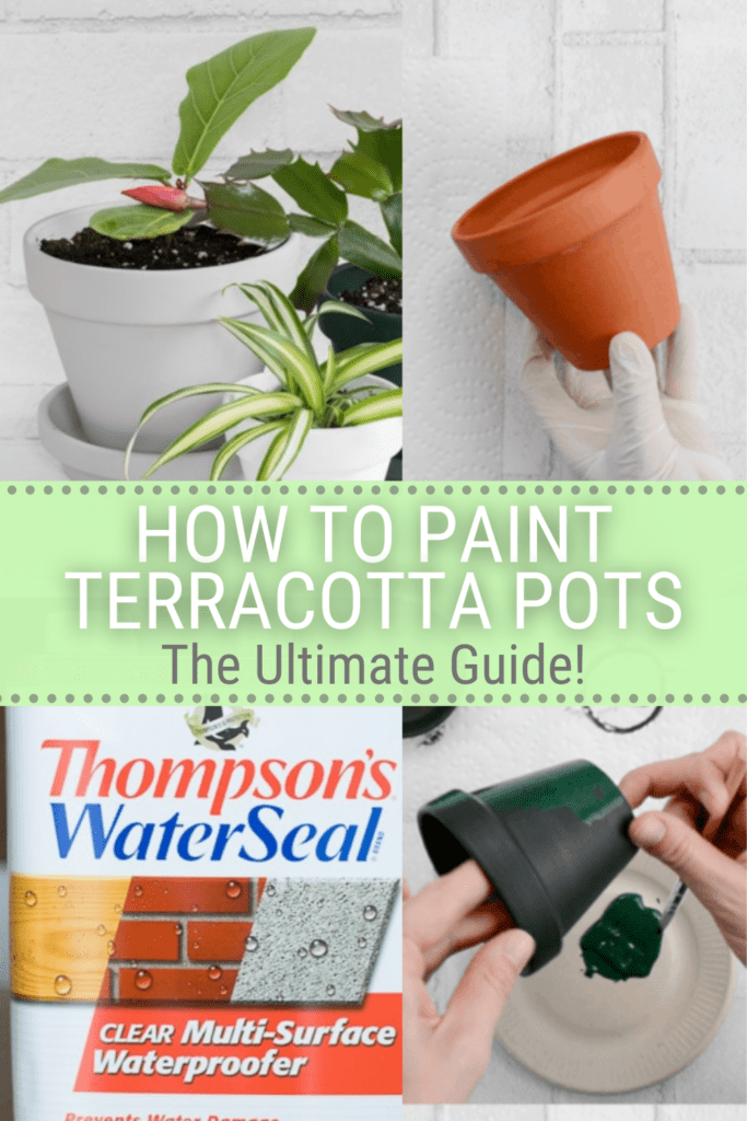 image collage of how to paint terracota pots to give them a modern look with text how to paint terra-cotta post the ultimate guide
