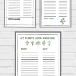 3 Free Printable Plant Watering Trackers for Houseplants