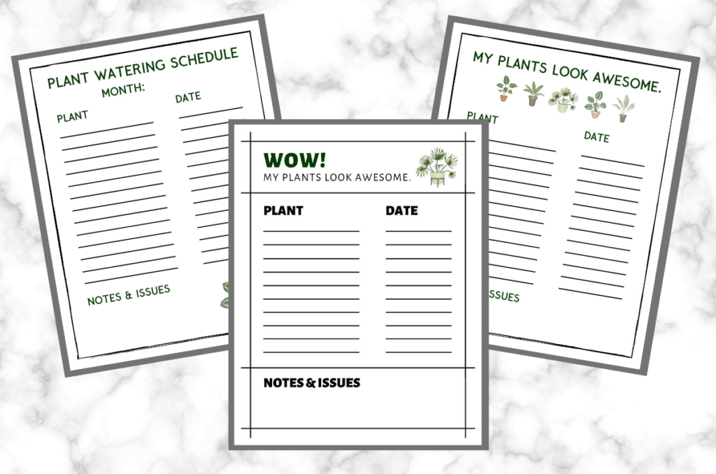 Houseplant Watering Schedule: Free Printable Plant Watering Tracker