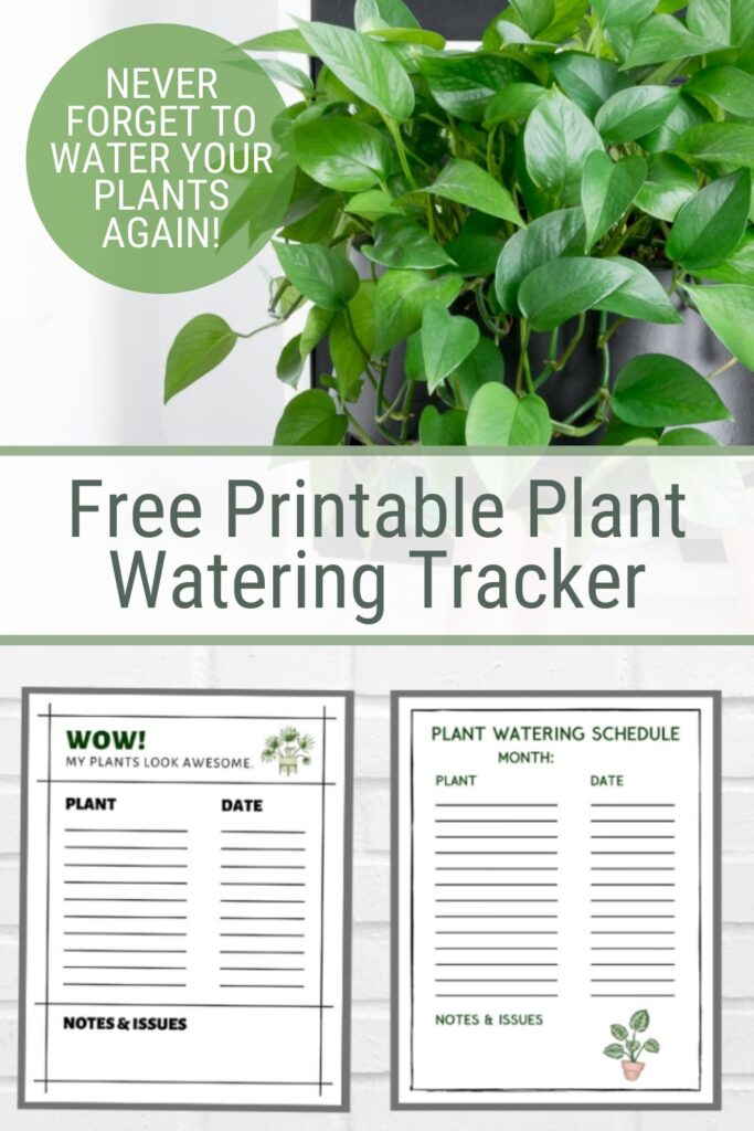 Image collage of plant and plant watering printable with text Free Printable Plant Watering Tracker