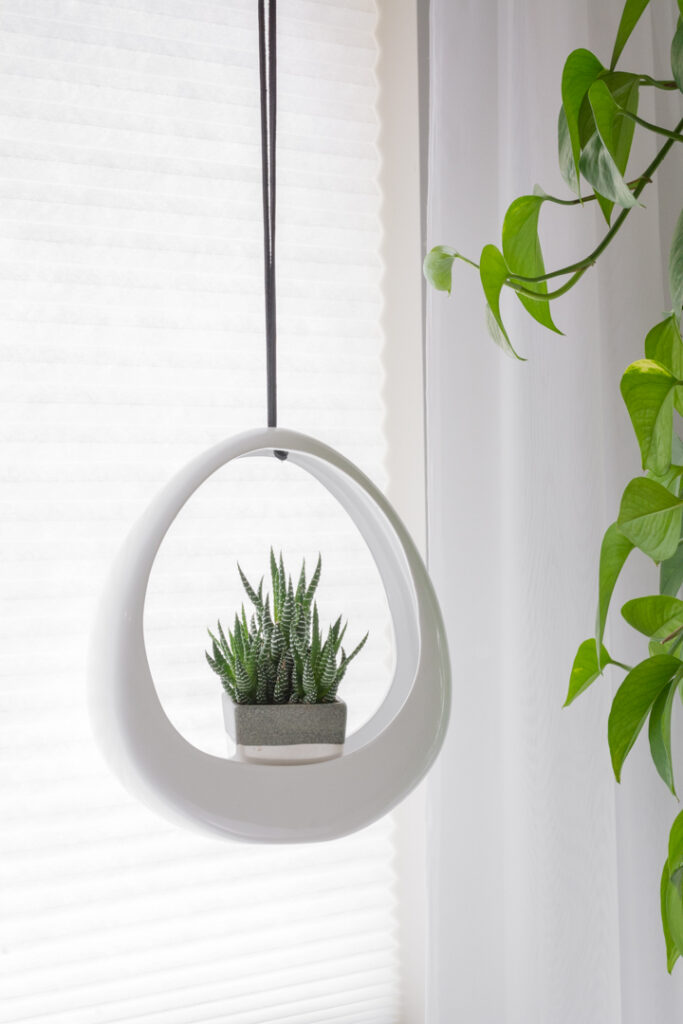 How to Update a Hanging Planter