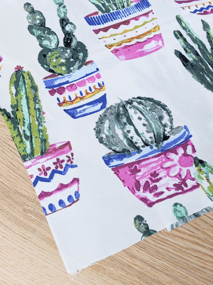 beautiful cactus fabric