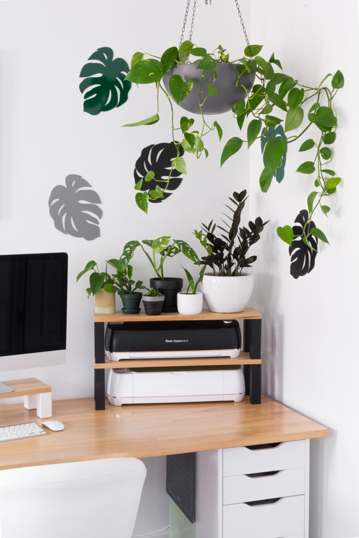 hanging pothos plant in a workspace